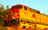 Aguiar Ag Group, Inc. Train Transportation